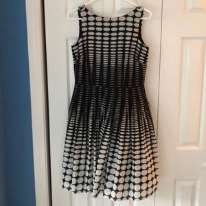 Talbots Cotton Dress
